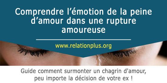 Comprendre Lémotion De La Peine Damour